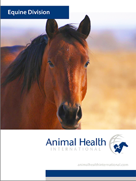 Animal Health International Brochure