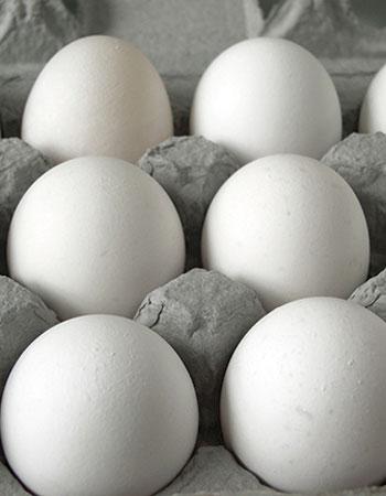 fresh-eggs-delivered